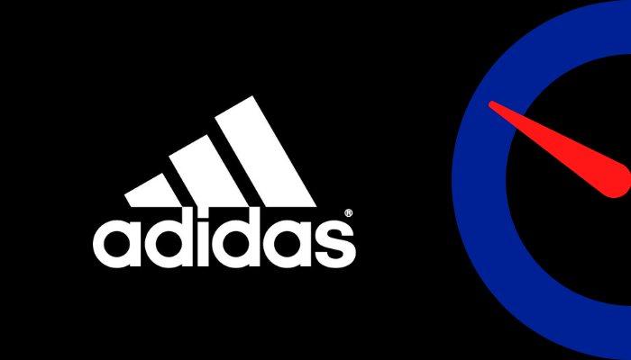 Adidas Net Worth